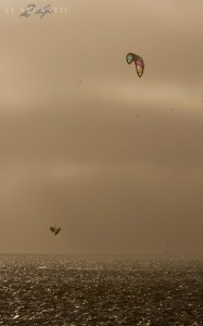 Activities - Kite surfing
