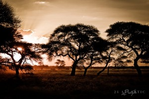 Landscapes - Abendstimmung