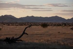 Landscapes - South evening