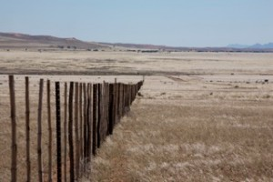 Landscapes - farm fence in South