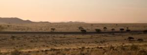 Landscapes - endless faint pink horizon