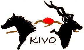 Kivo Lodge 2